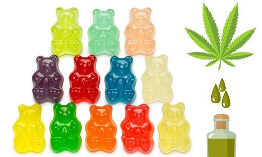 CBD Gummies vs CBD Oil: Which is better?